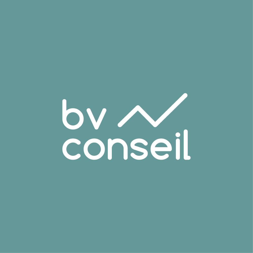 BV CONSEIL